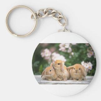 loving rabbits basic round button key ring