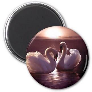 Loving Swans Forming a Heart 6 Cm Round Magnet