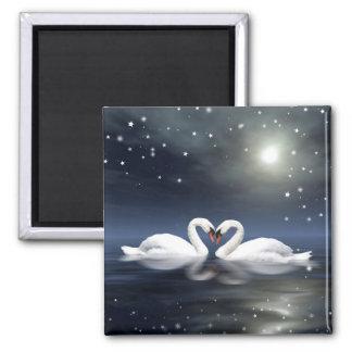 Loving swans magnet