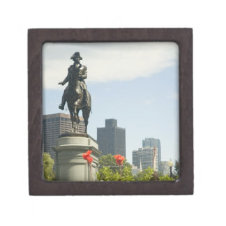 Low angle view of a statue in the garden, premium keepsake box