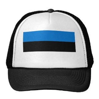 Low Cost! Estonia Flag Cap