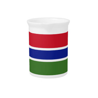 Low Cost! Gambia Flag Pitcher