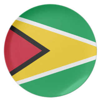 Low Cost! Guyana Flag Plate