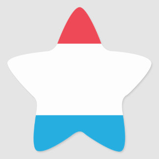 Low Cost! Luxembourg Flag Star Sticker
