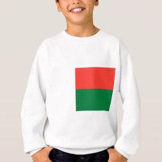 Low Cost! Madagascar Flag Sweatshirt