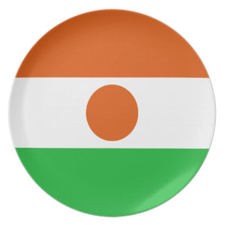 Low Cost! Niger Flag Plate