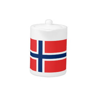 Low Cost! Norway Flag