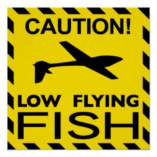 """Low Flying Fish"" Poster"