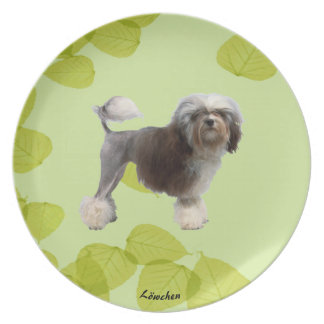 Lowchen on Green Leaves Plate
