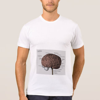 Lower Brain T-Shirt