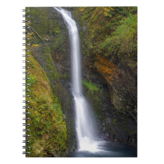 Lower Butte Creek Falls in Fall Season Spiral Notebook