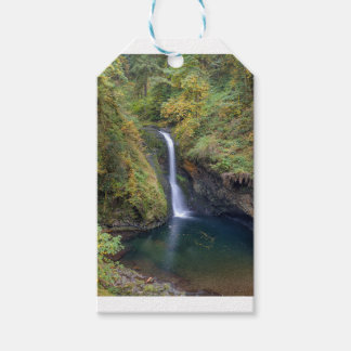 Lower Butte Creek Falls Plunging into a Pool Gift Tags