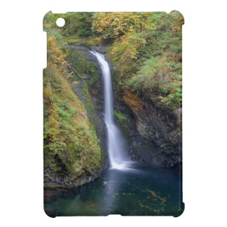 Lower Butte Creek Falls Plunging into a Pool iPad Mini Covers