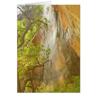 Lower Emerald Pool Waterfall Red rock and Tree Greeting Card