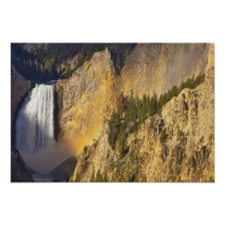 Lower Falls in the Grand Canyon of the Poster