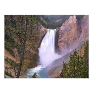 Lower Yellowstone Falls, Grand Canyon of Photographic Print