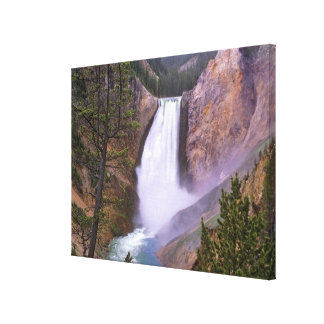 Lower Yellowstone Falls, Grand Canyon of Stretched Canvas Prints
