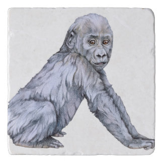 Lowland Gorilla Baby Trivet