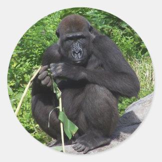 Lowland Gorilla Classic Round Sticker