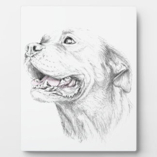 Loyalty, An American Staffordshire Terrier Photo Plaque
