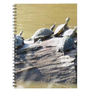 LSU Turtles.JPG Notebook