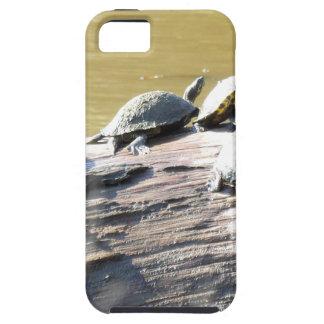 LSU Turtles.JPG Tough iPhone 5 Case