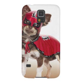 Lucha libre dog ,funny chihuahua,chihuahua galaxy s5 cases