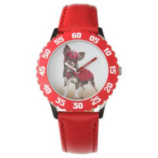 Lucha libre dog ,funny chihuahua,chihuahua watch