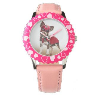 Lucha libre dog ,funny chihuahua,chihuahua watches