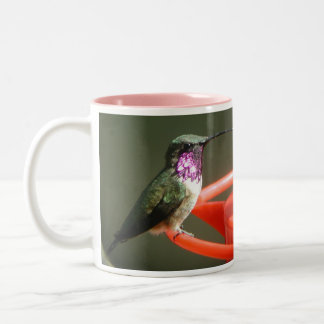 Lucifer Hummingbird Mug, left-handled Two-Tone Coffee Mug