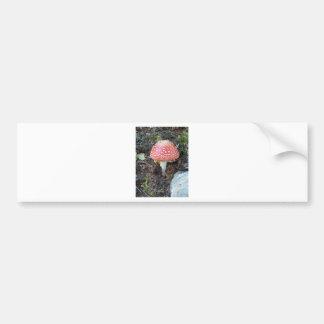 Luck mushroom bumper sticker