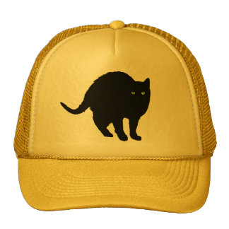 Lucky Arching Black Cat Hat