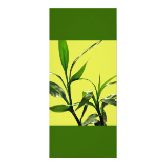 lucky bamboo green leaves keep calm read on personalized rack card