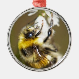 Lucky Bee Silver-Colored Round Decoration
