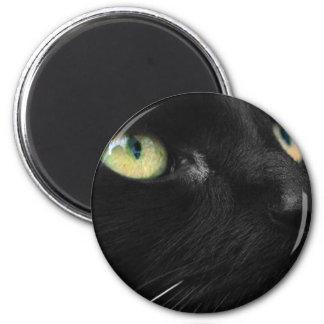 Lucky Black Cat Fridge Magnet