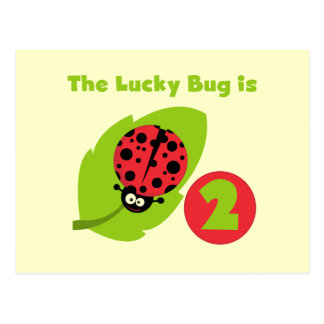 Lucky Bug 2nd Birthday T-shirts and Gifts Postcard
