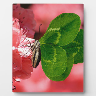 Lucky Butterfly Photo Plaques