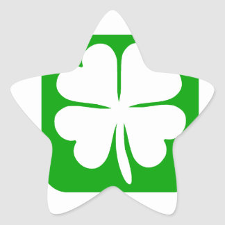 Lucky Charm St Patrick s day gift Star Sticker