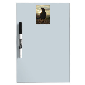 Lucky chicken 01.2 dry erase board