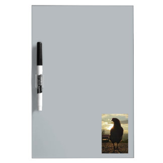 Lucky chicken 02.2 dry erase board