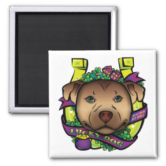 Lucky Dog Square Magnet