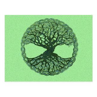 Lucky Green Tree of Life Postcard