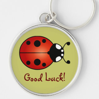 Lucky Ladybug Red Orange Black Ladybird Good Luck Key Ring