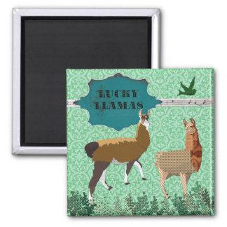 Lucky Llamas Green Magnet