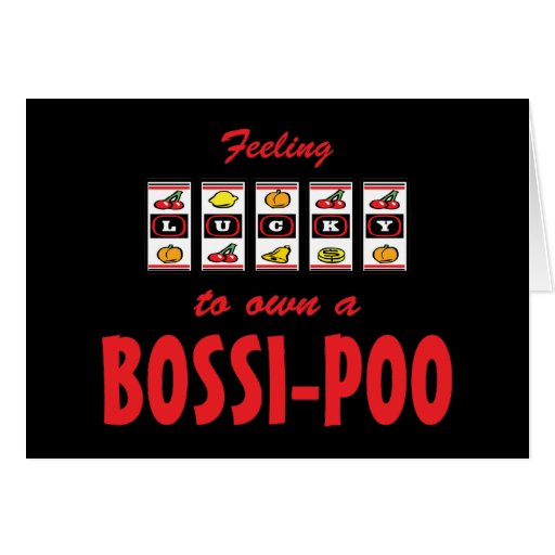 Lucky to Own a Bossi-Poo Fun Dog Design Greeting Card