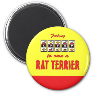 Lucky to Own a Rat Terrier Fun Dog Design Magnet