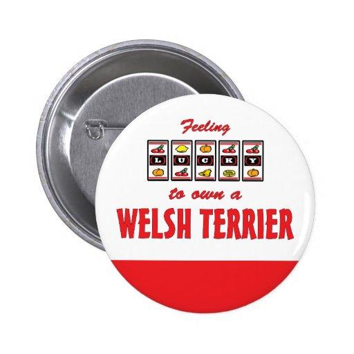 Lucky to Own a Welsh Terrier Fun Dog Design Buttons