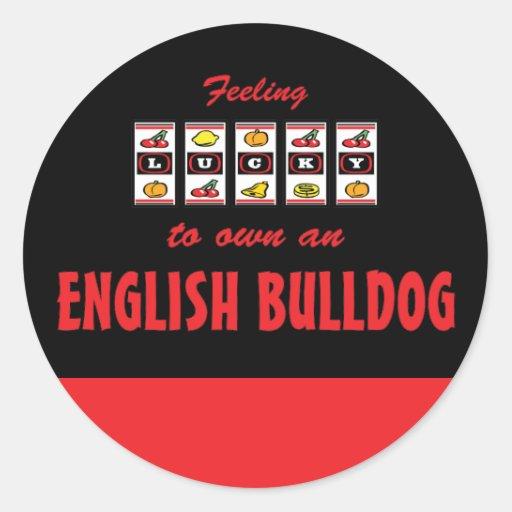 Lucky to Own an English Bulldog Fun Dog Design Stickers