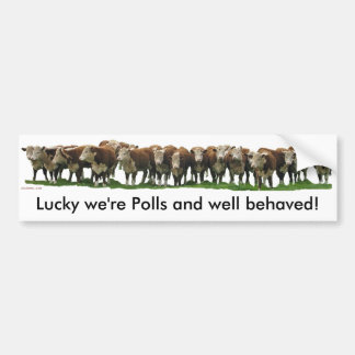 Lucky we're Poll Herefords Bumper Stickers