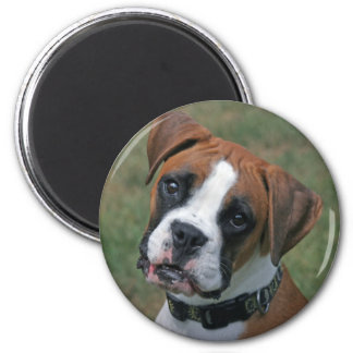 """""""Lucy"""" Boxer Photo Magnet"""